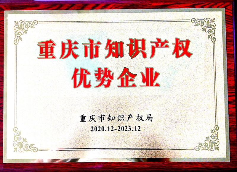 重庆市知识产权优势企业